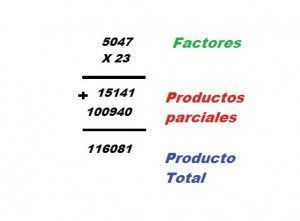 Productos parciales